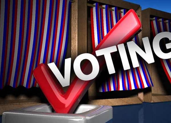 Voting-Check_1455722130014.jpg