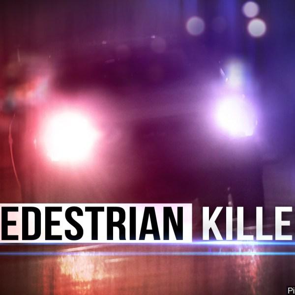 pedestrian hit_1472522518859.jpg