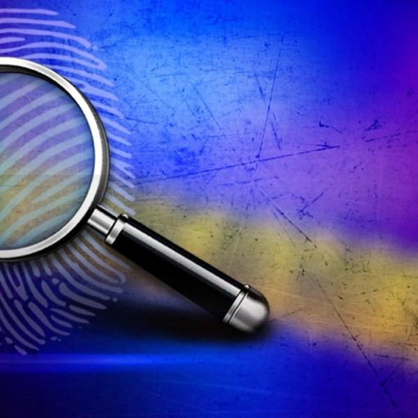 investigationmgn_1476221285399.jpg