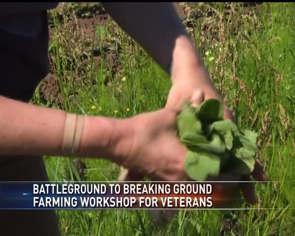 Farming program for veterans_37183966