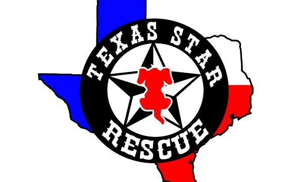 Texas Star Rescue Logo